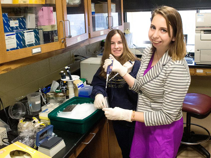 Haley and Cynthia prepare a PCR.