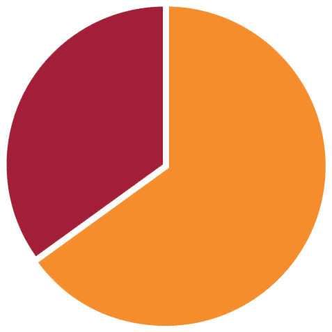 Pie chart describing 30% male and 70% female